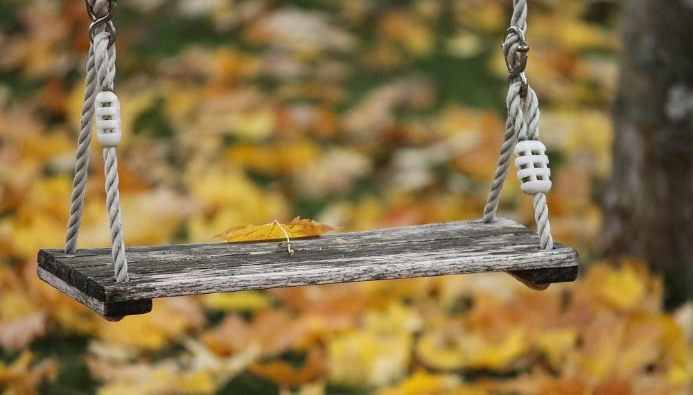 balançoire dans un arbre