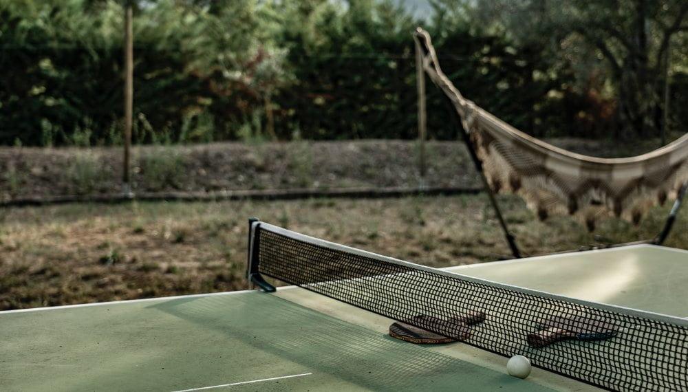 Table de ping pong dimensions